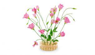 Klong Äng Pond Vase