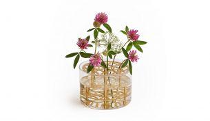 Klong Äng Vase Small   Ø 13 cm   Brass