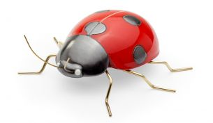 Mambo Unlimited Ideas Fauna Ladybug