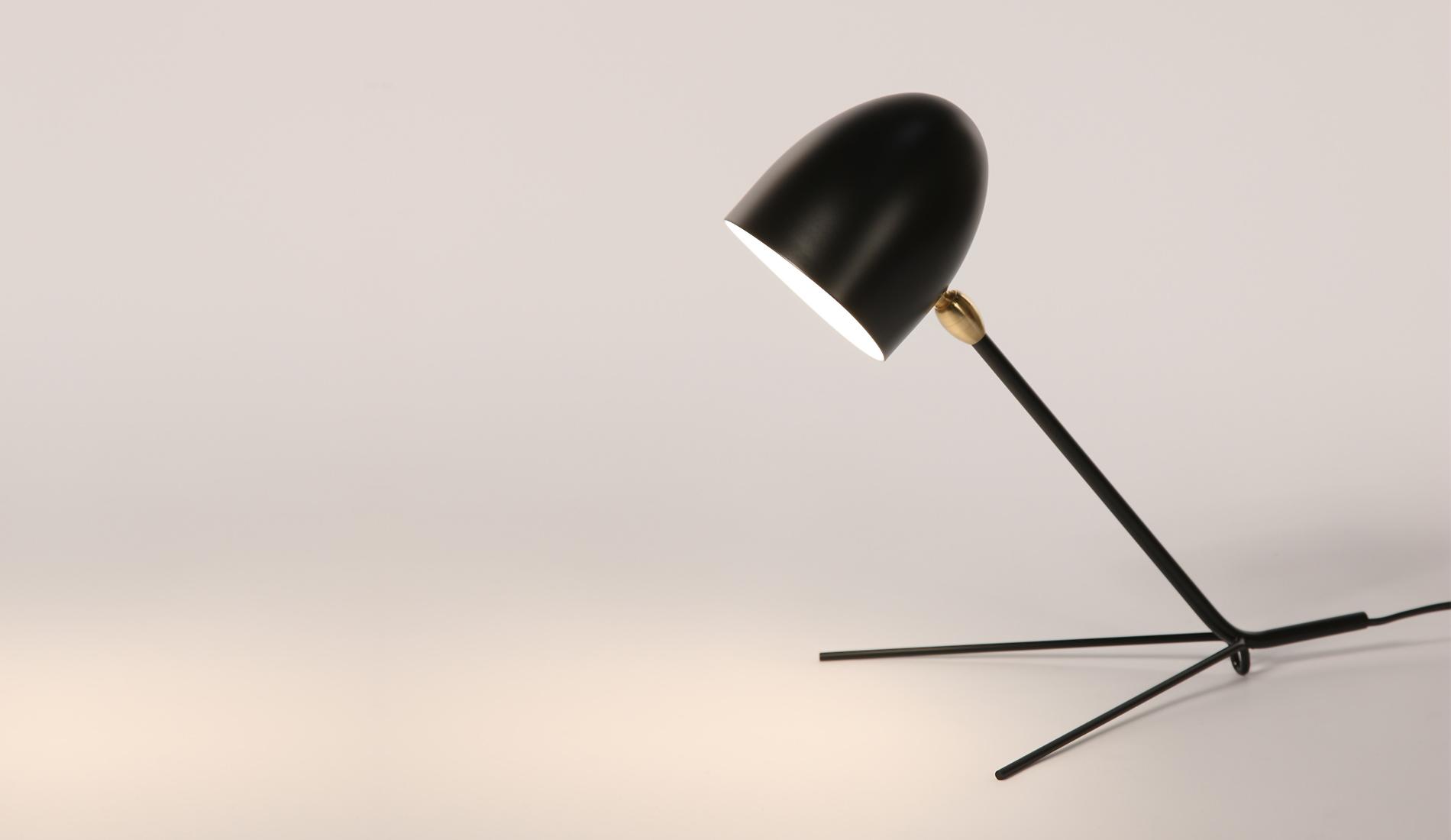 lampe de bureau globe terrestre. Black Bedroom Furniture Sets. Home Design Ideas